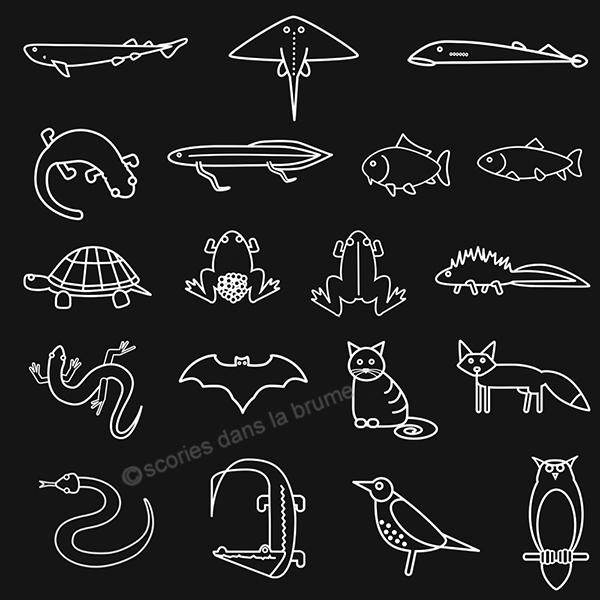 pictogrammes animaux
