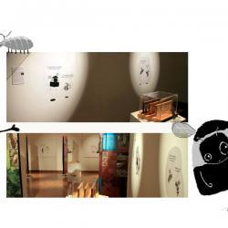 """Exposition """"Insectes bâtisseurs"""""""