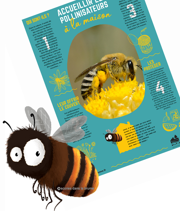 "Osmie, poster ""les pollinisateurs"""