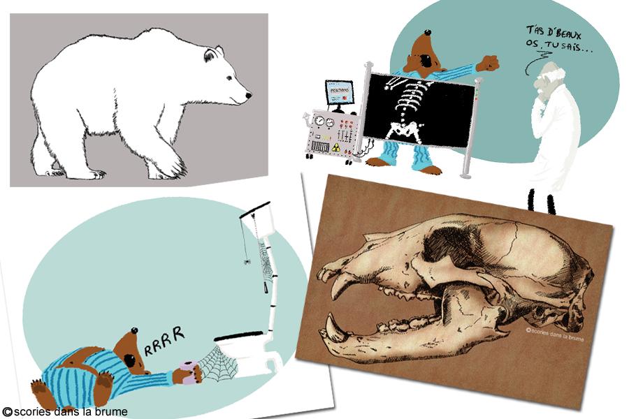 """Exposition """"L'ours, toute une histoire"""""""