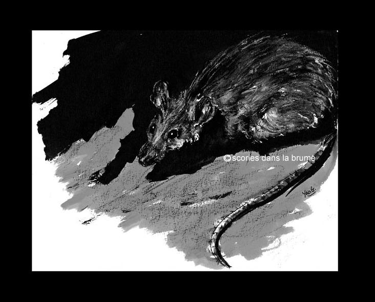 """Rat, exposition """"Dans la vallée coule une rivière"""""""