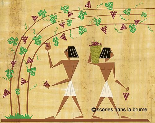 vigne egypte antique